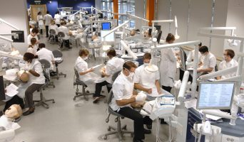 Dental Schools Council announces new Chair